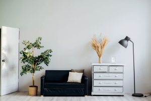 Prepare you furniture for long-term storage- A plant, a couch, a closet and a lamp